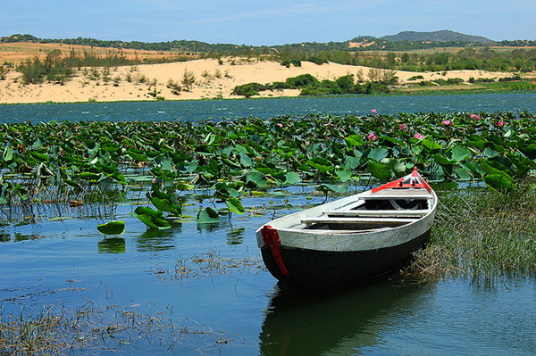 Visiting Bau Trang in Mui Ne in summer to see beautiful lotuses