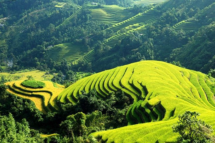 Tips for a trip to Sapa