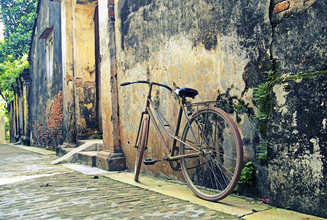 Or the old bike leaning on moss-covered wall